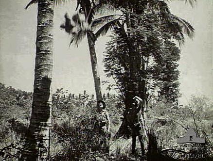 Guerillas-in-Timor-4212091.jpg