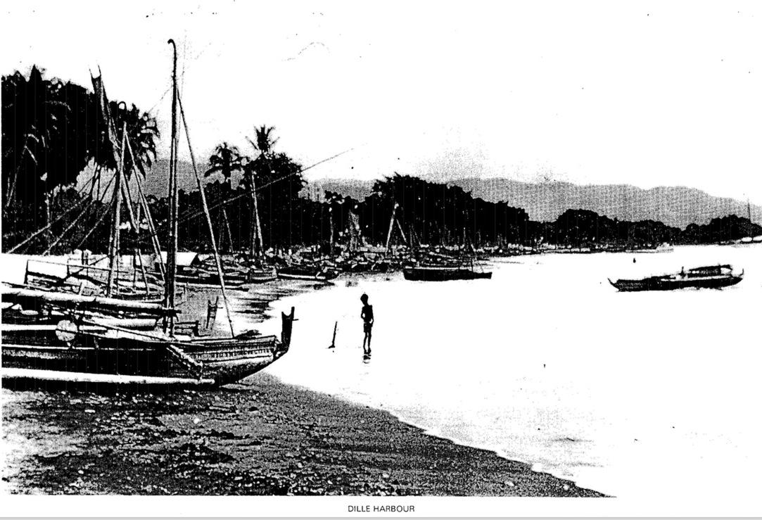 Dilli harbour from Doig.jpeg